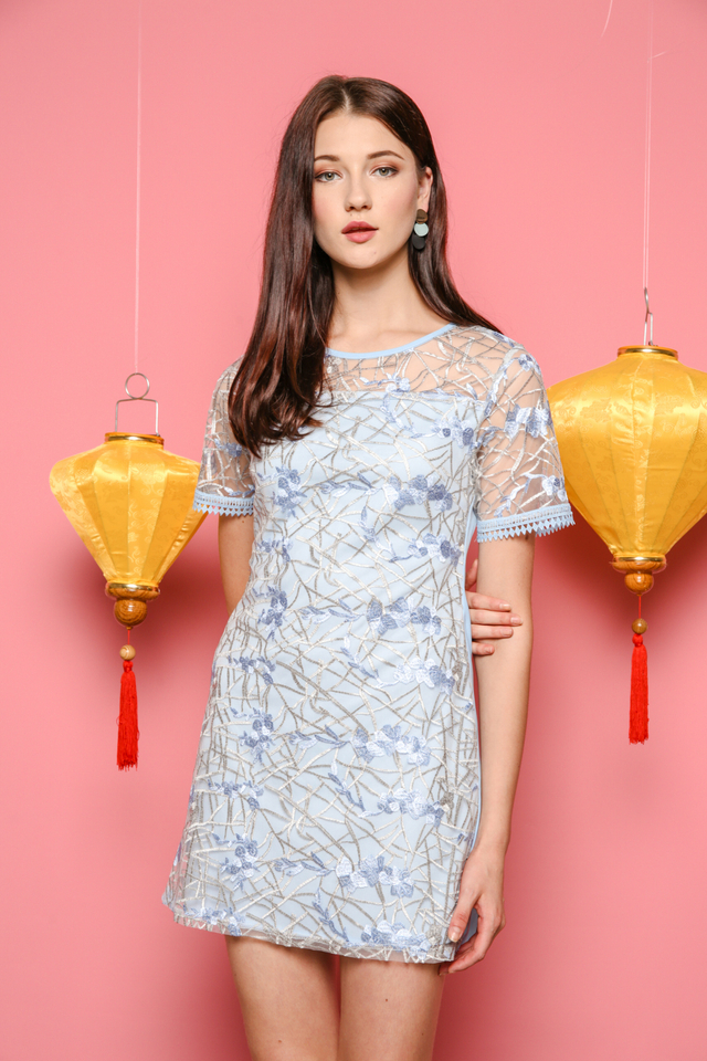 Alicia Organza Embroidery Dress in Powder Blue
