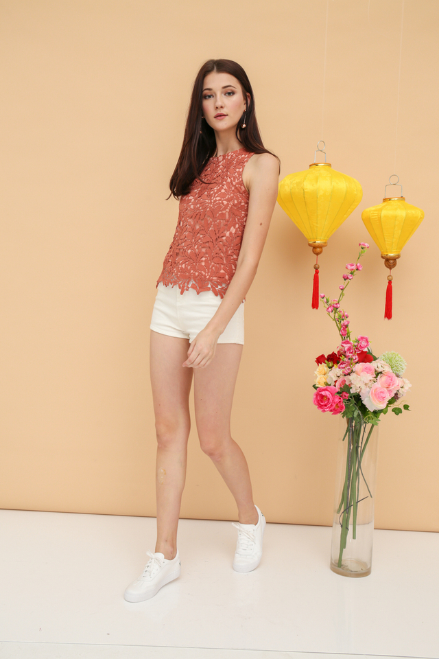 Nerissa Crochet Sleeveless Top in Terracotta (XS)