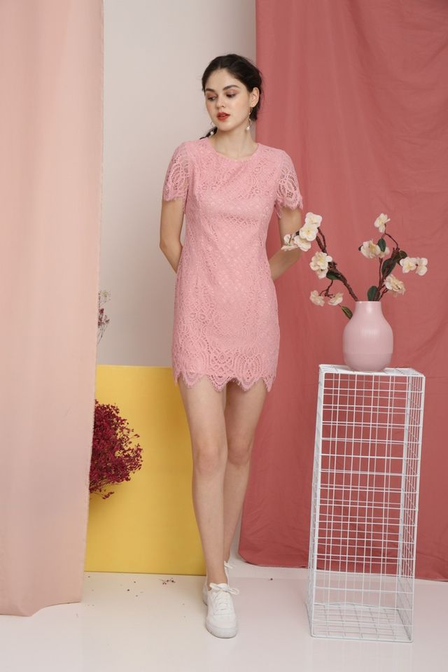 Gladys Premium Crochet Scallop Hem Dress in Pink (XS)