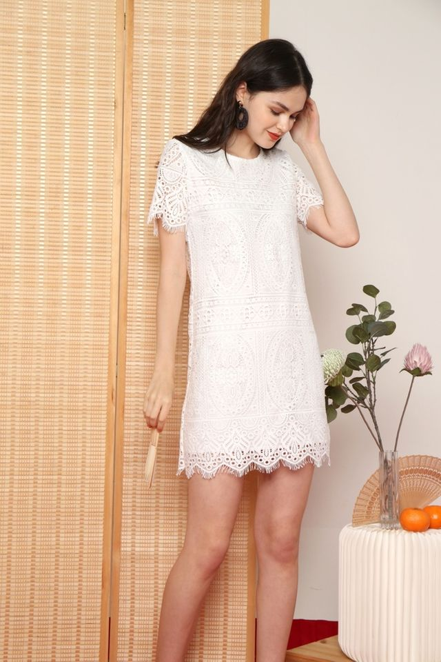 Odina Premium Crochet Sleeved Dress in White (XS)