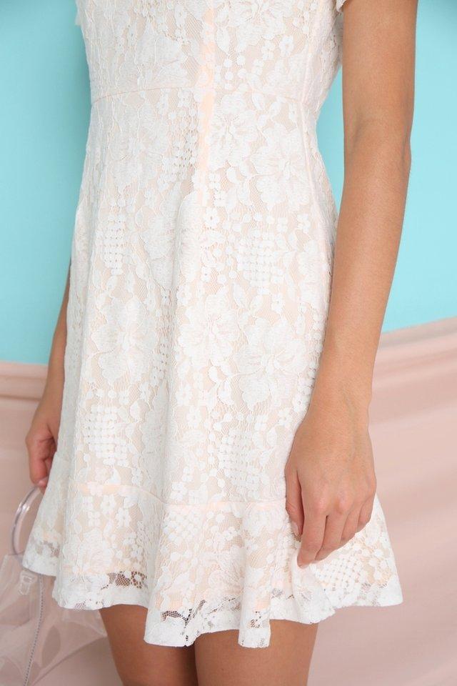 Adalene Lace Dropwaist Dress in white